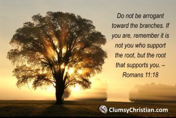 Romans 11 18